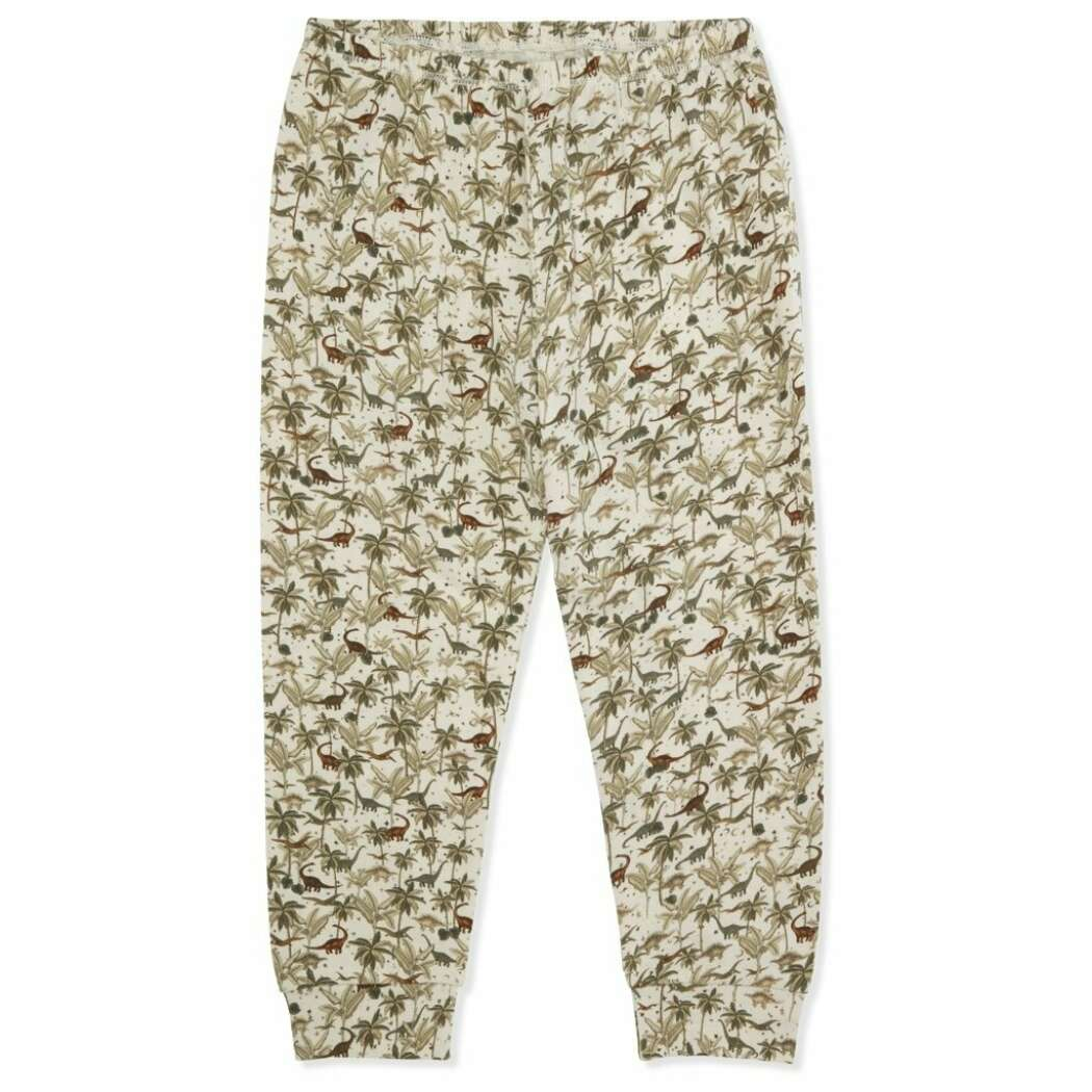 Basic pants dino